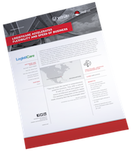 Logisticare case study with Vizuri on reducing operational costs